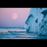 Greenland Winter Adventure in Ilulissat 4 days/3 nights 10