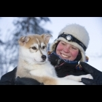 Finnish Lapland with Helsinki and Stockholm 11 days/10 nights 31