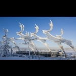 Finnish Lapland with Helsinki and Stockholm 11 days/10 nights 44