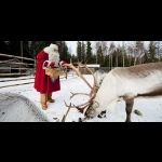Finnish Lapland with Helsinki and Stockholm 11 days/10 nights 33