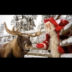 Finnish Lapland with Helsinki and Stockholm 11 days/10 nights 20