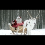 Finnish Lapland with Helsinki and Stockholm 11 days/10 nights 0
