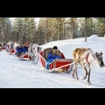 Finnish Lapland with Helsinki and Stockholm 11 days/10 nights 16