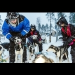 Scandinavian Capitals  with Lapland Cph-Sto 15 days/14 nights 49