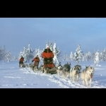 Scandinavian Capitals  with Lapland Cph-Sto 15 days/14 nights 52