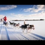 Lapland Experience of Finland in Kakslauttanen 5 days/4 nights 14