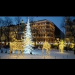 Scandinavian Capitals  with Lapland Cph-Sto 15 days/14 nights 35