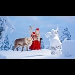 Lapland Experience of Finland in Kakslauttanen 5 days/4 nights 10