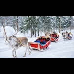Lapland Experience of Finland in Kakslauttanen 5 days/4 nights 8