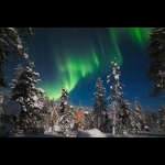 Lapland Experience of Finland in Kakslauttanen 5 days/4 nights 13